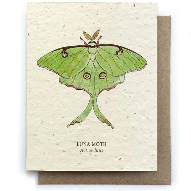 The Bower Studio - Luna Moth Insect Greeting Cards - Plantable Seed Paper