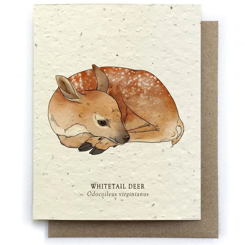The Bower Studio - Deer Animal Greeting Cards - Plantable Seed Paper