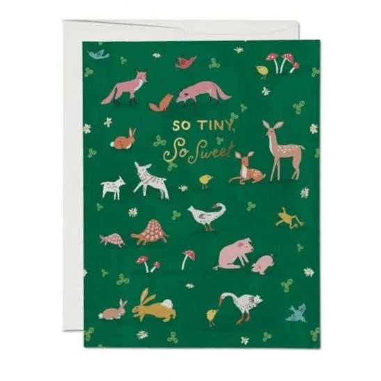 Red Cap Cards - Tiny Animals