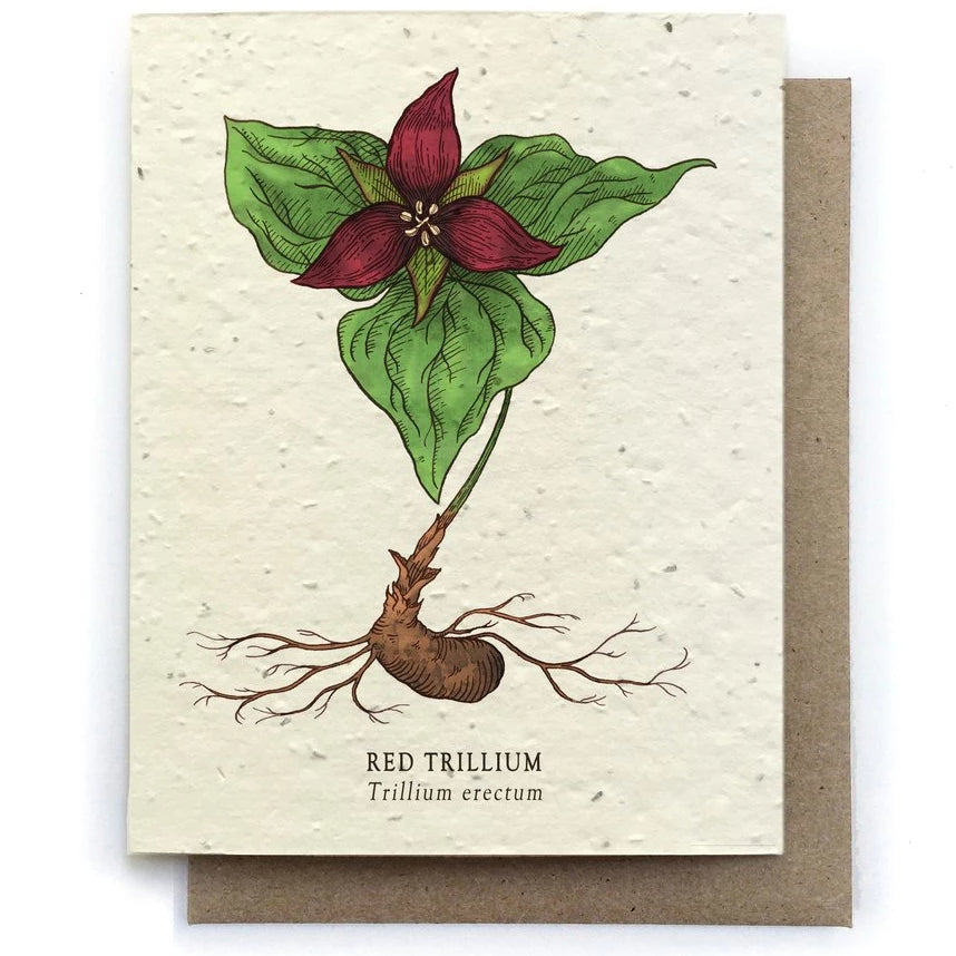 The Bower Studio - Trillium Botanical Greeting Cards - Plantable Seed Paper