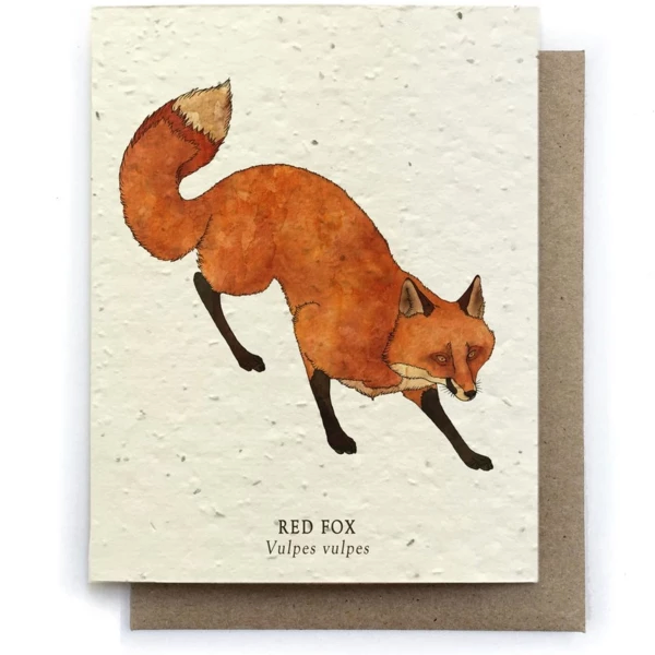 The Bower Studio - Fox Animal Greeting Cards - Plantable Seed Paper