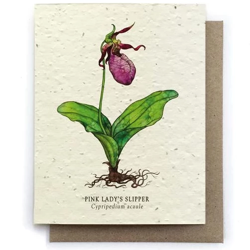 The Bower Studio - Lady Slipper Botanical Greeting Cards - Plantable Seed Paper