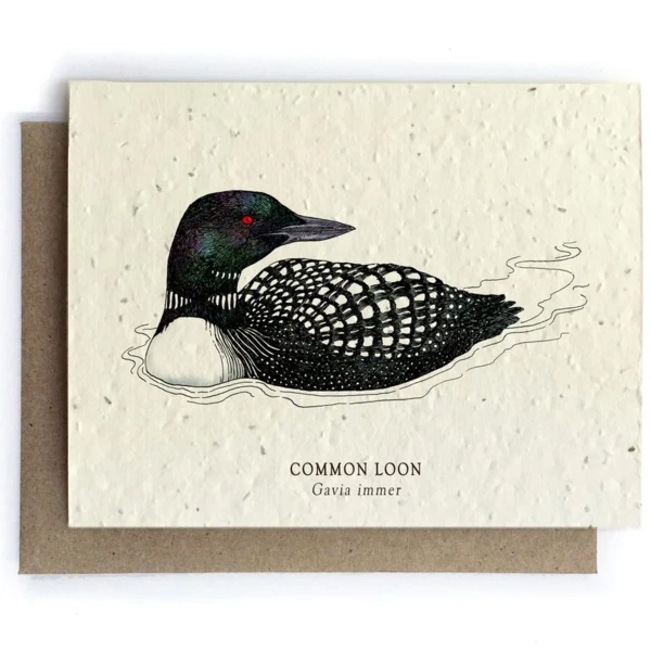 The Bower Studio - Loon Bird Greeting Cards - Plantable Seed Paper