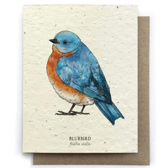 The Bower Studio - Bluebird Bird Greeting Cards - Plantable Seed Paper