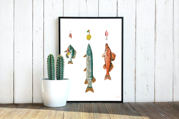 Framed Fish & Lures print leaning against wall next to plant