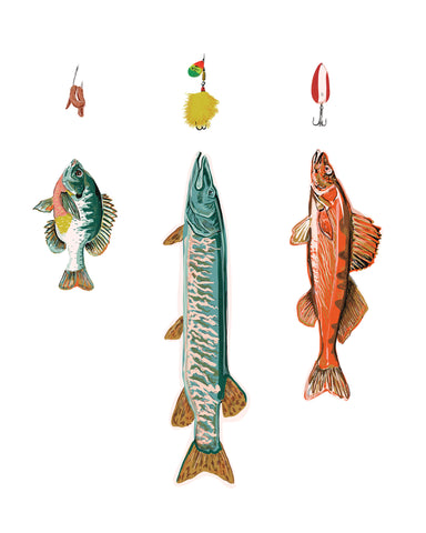 Fish & Lures