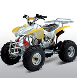 "110cc Assassin 4 Stroke ATV W/18"" Tires & Utility Rack"