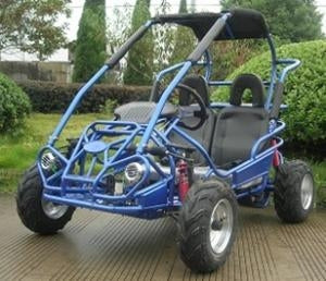 200cc Rally Force Go Kart TrailMaster