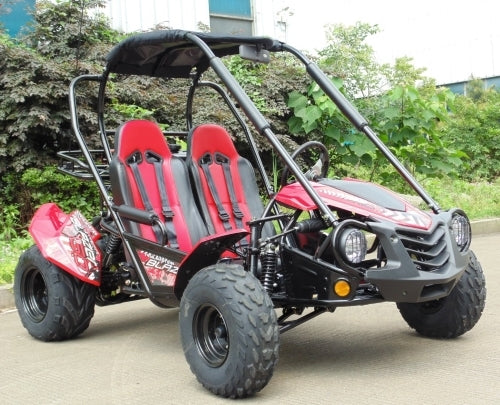 150cc Go Kart Trailmaster Blazer 150 Automatic Trans. With Reverse