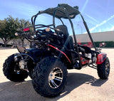 TrailMaster Blazer 200EX 200cc Size Go Kart 168.9cc 2 Seater Fully Automatic w/Reverse Dune Buggy