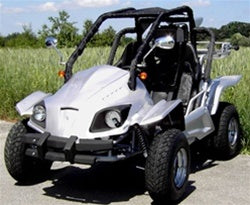 Buy 150cc Go Cart