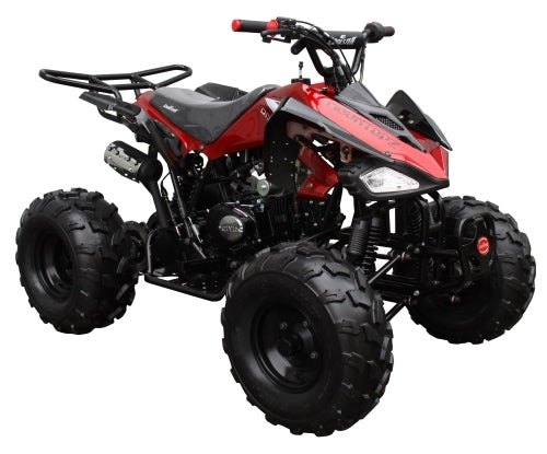 125cc Coolster Atv Semi Automatic Mid Size Quad With Big 19