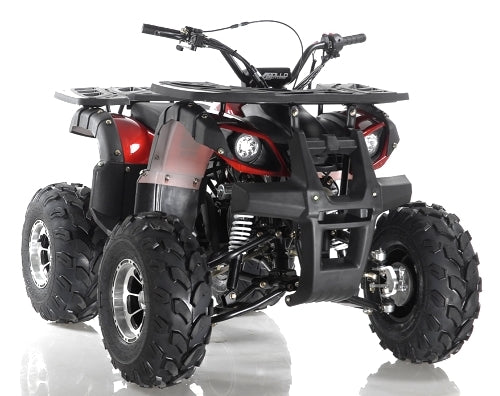 125cc Focus ATV Apollo Series Fully Auto w/Reverse & Big 19