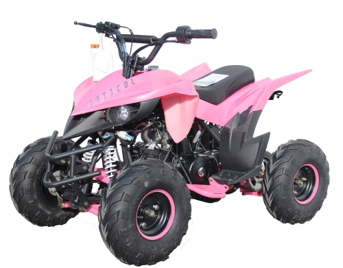 110 Atv Fully Automatic Mini Size Sport 107cc ATV 4 Wheeler - KD-110A-1-Pink