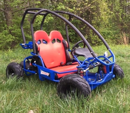 Kids Go Kart Big Horn 70cc Go Kart w/ Electric Start