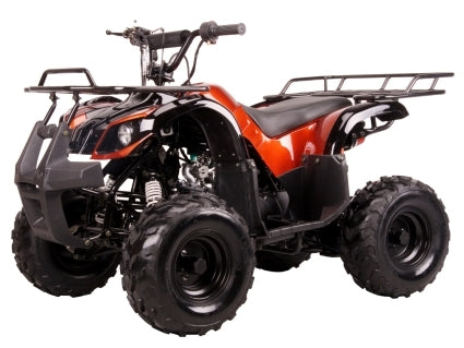 110 Quad Coolster Brand New 110cc Mini Size Fully Auto ATV Four Wheeler - ATV-3050D Fully Assembled