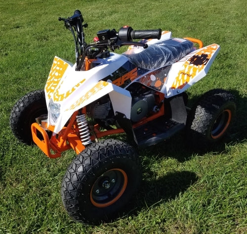 110cc Atv RPS ATV Racing Sport Style Fully Auto With Remote Kill