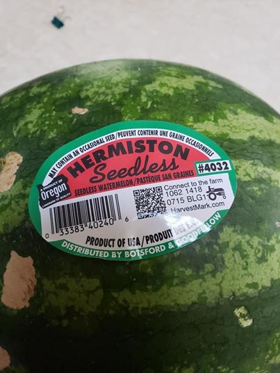 Watermelon Lime Jelly