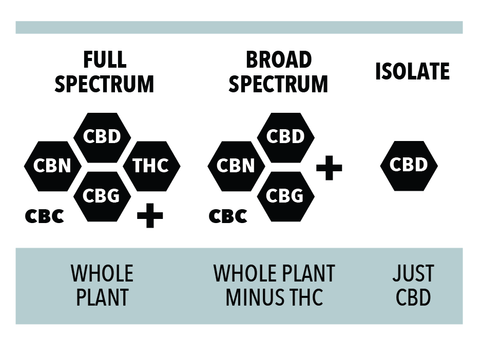 Full Spectrum CBD vs. Broad Spectrum CBD vs. CBD Isolate