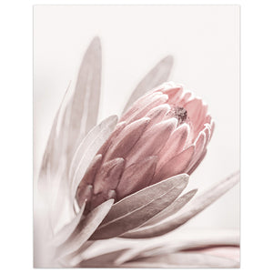 Flowers Wall Art Peony Posters Floral Art Print Rose Canvas Painting🌷