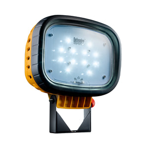 LED 3000 Floodlight 110V Head Only