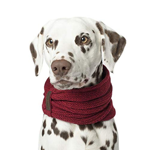 Sierra Dog Scarf