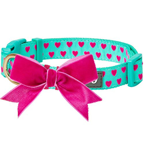 Blueberry Pet Collar  4 Adjustable Patterns