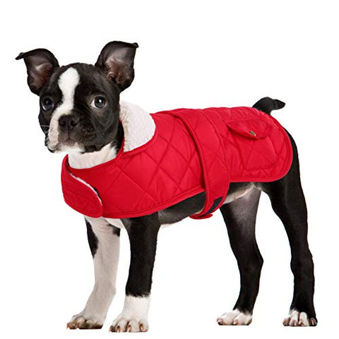 Queenmore Winter Dog Jacket