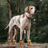 Water resistant dog boots