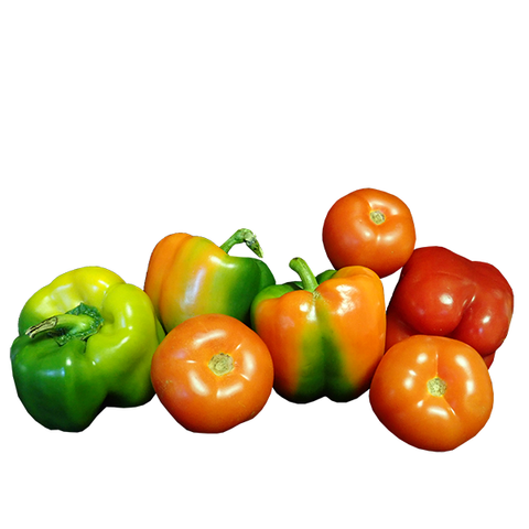 COLOURED CAPSICUMS MINI PACK