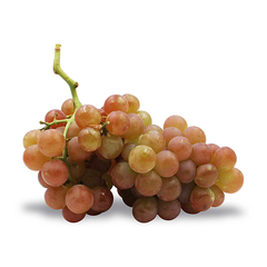 MUSCATEL GRAPES (500G)