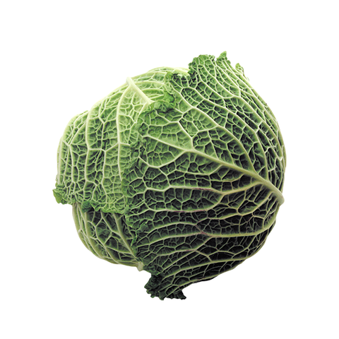 SAVOY CABBAGE WHOLE