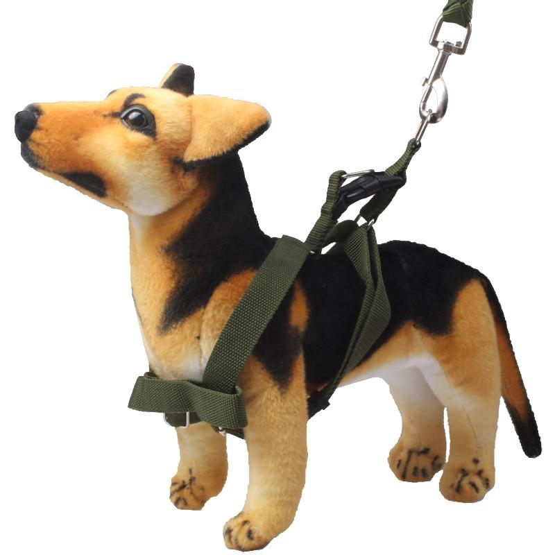 Green Army Pets Harness Training Lead Leash