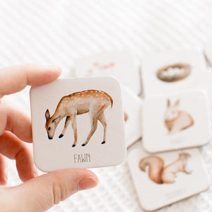 Modern Monty- Australia Memory Card Game Memory Cards, cards, memory, new modern-monty-australia-memory-card-gameTwo Little Seedlings