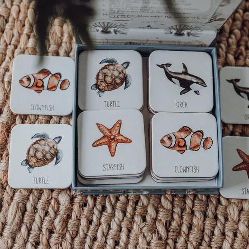 Modern Monty- Ocean Memory Card Game Memory Cards, cards, memory modern-monty-ocean-memory-card-gameTwo Little Seedlings
