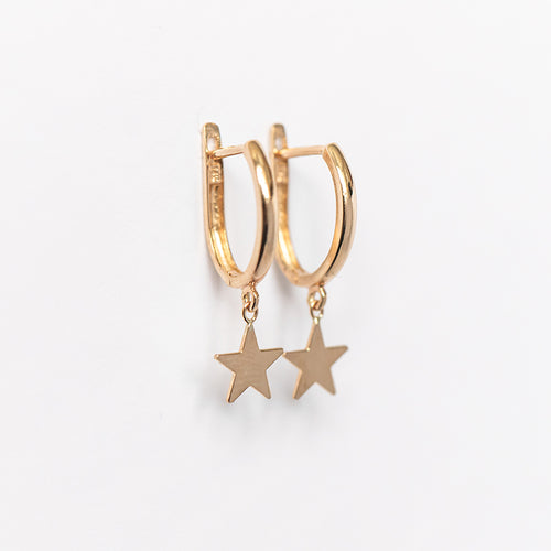 Drop Star Oval Huggie Earring