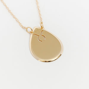 Raindrop Disc Zodiac Necklace