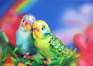 Sarah Graham - Budgie Love - Framed Print