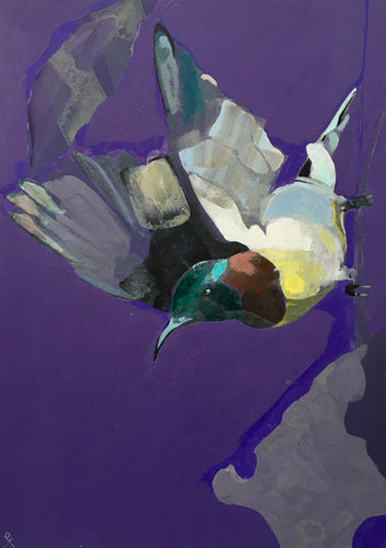 Emily Kirby -'Sunbird V' Original Painting on Canvas