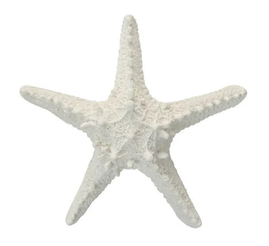 Hamptons Style Decor Starfish