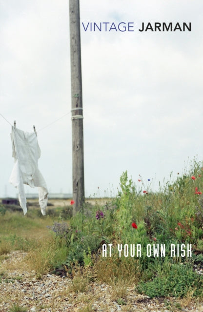 At Your Own Risk: A Saint's Testament by Derek Jarman