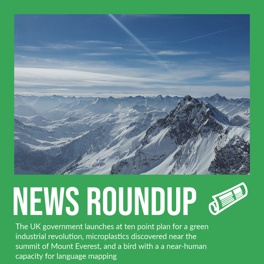 The UK government launches a ten point plan for a green industrial revolution, microplastics discovered near the summit of Mount Everest, and a bird with a a near-human capacity for language mapping