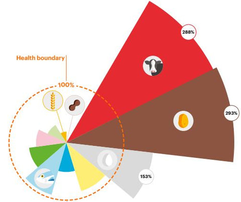According to the EAT-Lancet Commission we need to rebalance our sources of food, both for our own health and that of the planet's