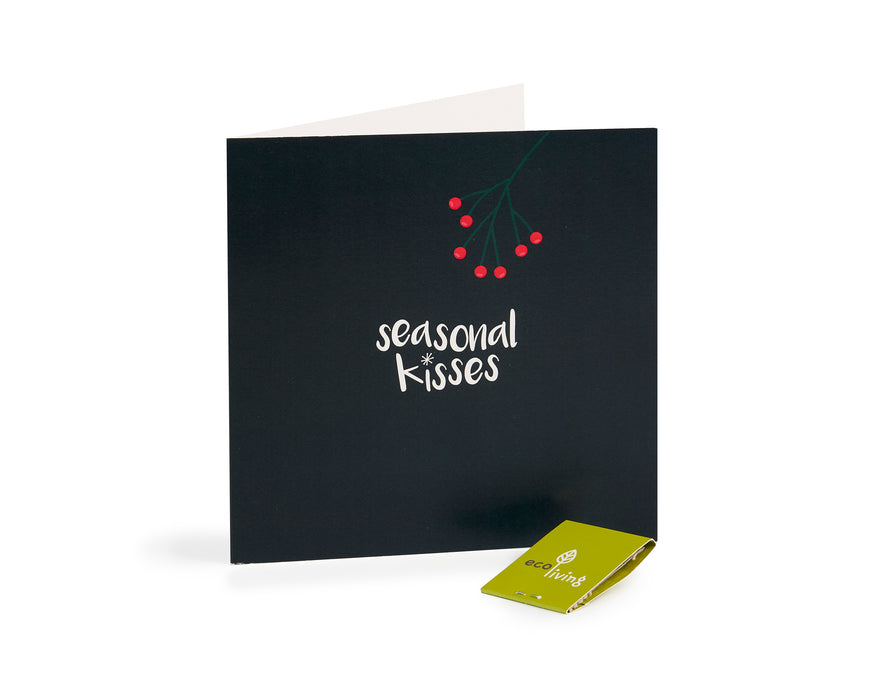 Recycled Christmas Cards - Plant Berries (Pack of 10)