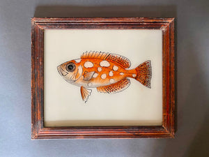 Fish Medium Glass Painting