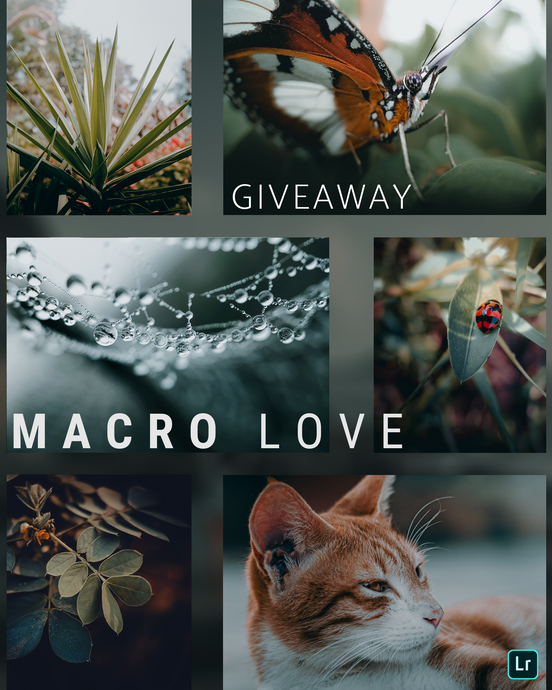 Macro Love - GIVEAWAY - PRO-EXPOSURE
