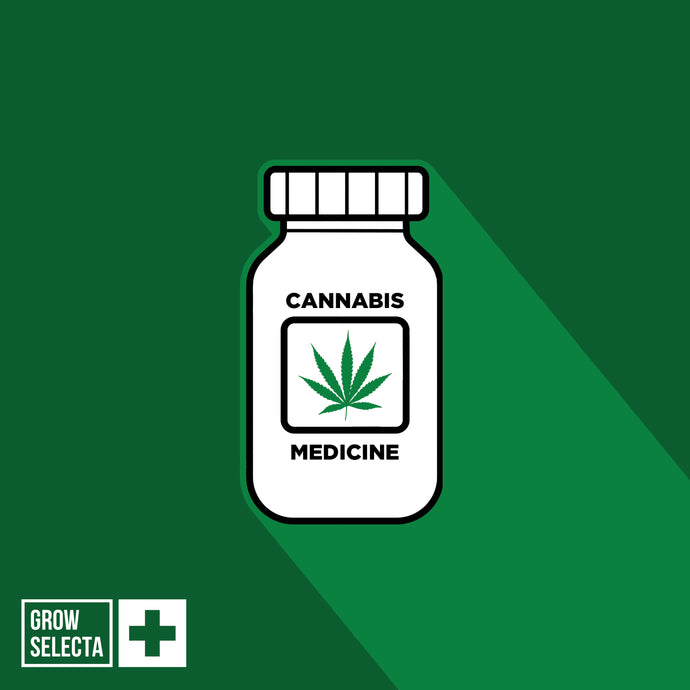 Cannabis And Medicine