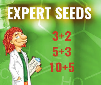 Free Seeds From Expert Seeds