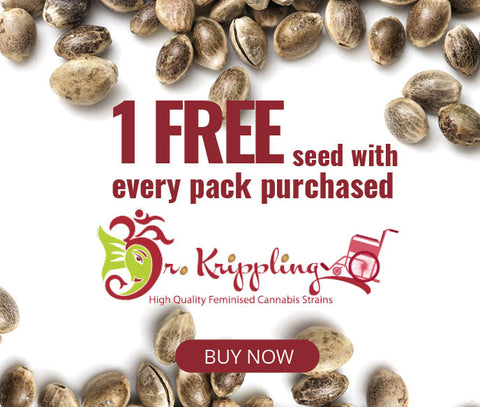 Free Seed from Dr Kripling