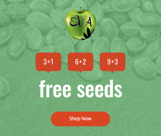Eva Seeds Free Seeds Offer Image